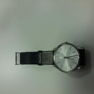 LF 2037 watch