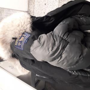 LF 3279 jacket